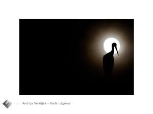 Andrija_Vrdoljak_roda_i_mjesec