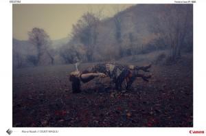 Muna_Nazak_Kreativna_fotografija_Osjeti_Magiju