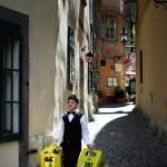 Armin Graca - Grad - The young working boy