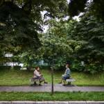 Denis Ruvić - Ljudi - Drvo života