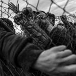 Jaka Gasar - Behind the fence and hope of europe // Svakodnevni život