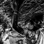 Ferdous Shabbir - Everyday life - Firewood from forest