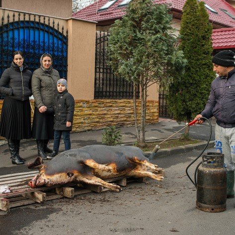A family poses in front of their house in Bucharest next to a ritualic sacrificed pig. The animal arrived already killed as the blood on the left comes from a sacrificed chicken. This ancient ritual, linked with the Christmas Eve is often seen in the Romanian countryside and sometimes outskirts or at the capital's periphery, which still has very tight ties with the rural society.